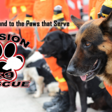 Mission K9 Rescue finding homes for dogs that serve