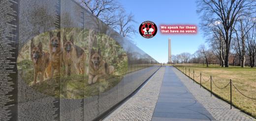 war dogs, vietnam war memorial, working dogs