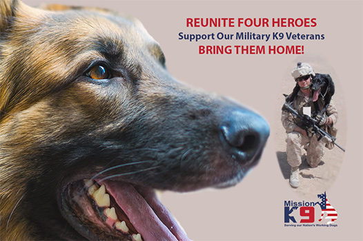 Reunite 4 Hero MWD's With Their Handlers