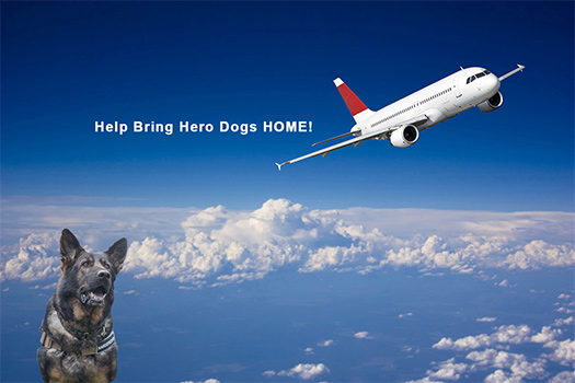 Bring Two Brave K9 Veterans Home!